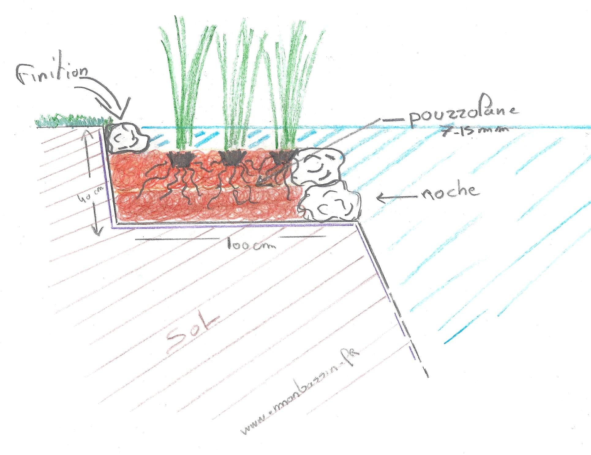 Construire une rocaille aquatique for Plante pour bassin pas cher