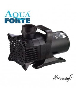copy of pompe AF - 40 000