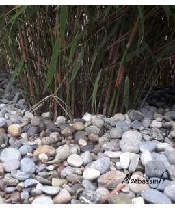 Petits galets bassin - Rhin