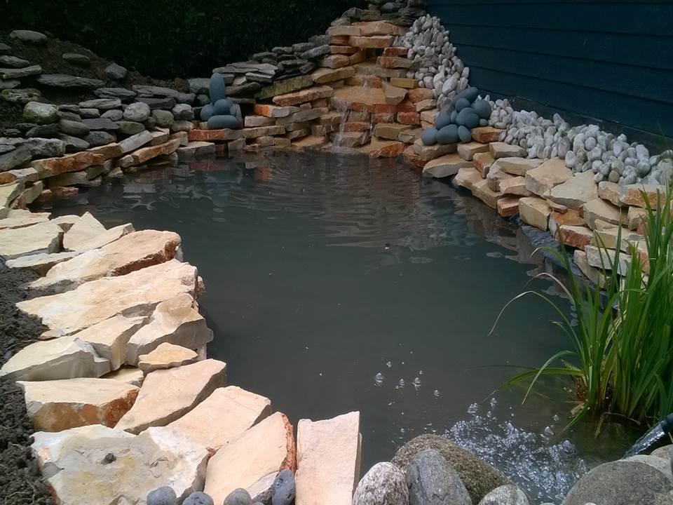 Combien coûte un bassin de jardin?
