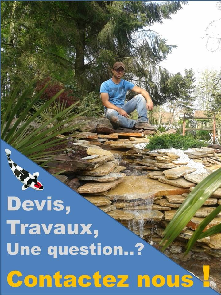 Devis-travaux-bassin-contact